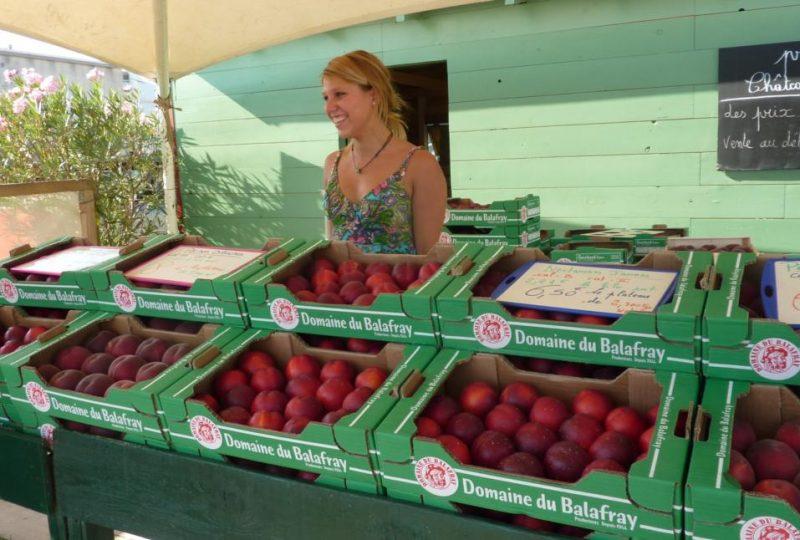 Apricots-Peaches-Nectarines Sylvie Guichard à Châteauneuf-du-Rhône - 0