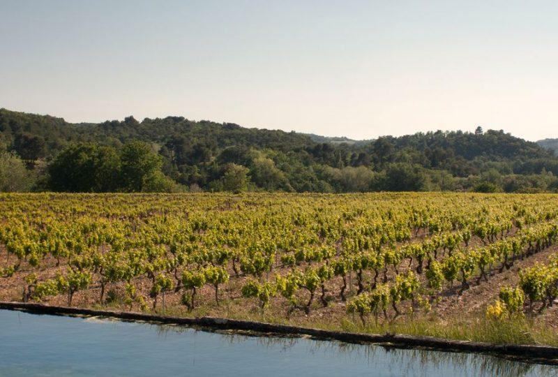 Les Vignerons de Valléon – Caveau de St Gervais sur Roubion à Saint-Gervais-sur-Roubion - 1